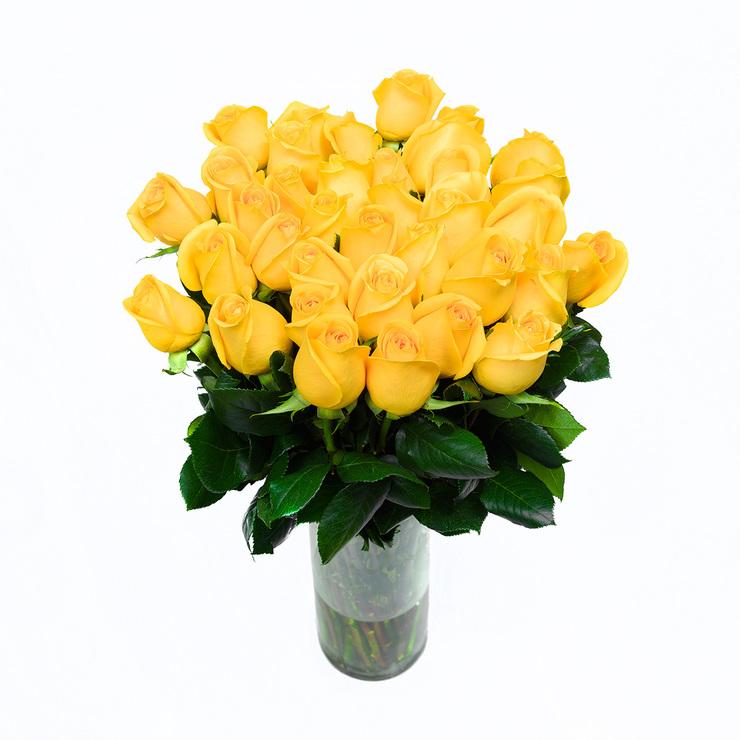 Bouquet 36 Rosas Amarillas Costco Mexico