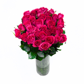 Bouquet de 36 Rosas Color Fucsia